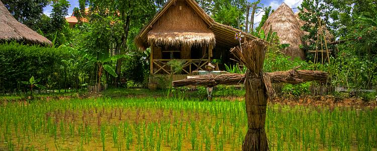 Bangkok et les villages du Nord