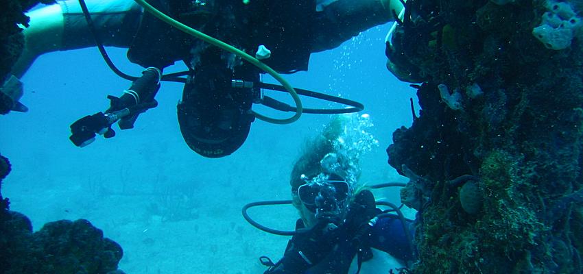 Plongée à la Dominique