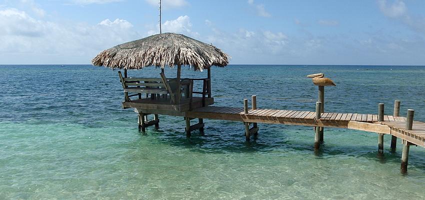 Costa de la isla de Roatán