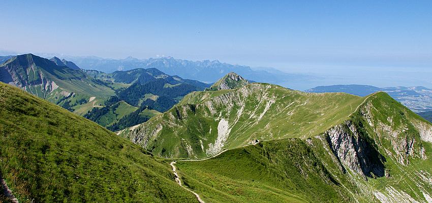 Les Alpes bernoises : le Moléson