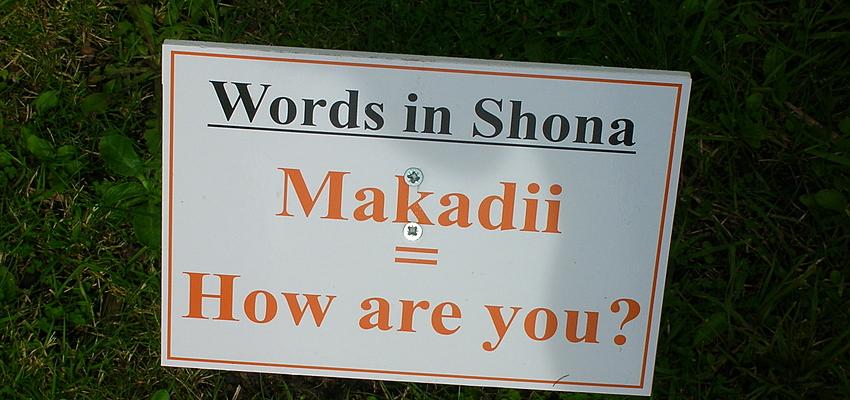 Exemple de mot en Shona
