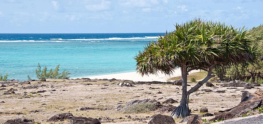 La plage, activité gratuite !