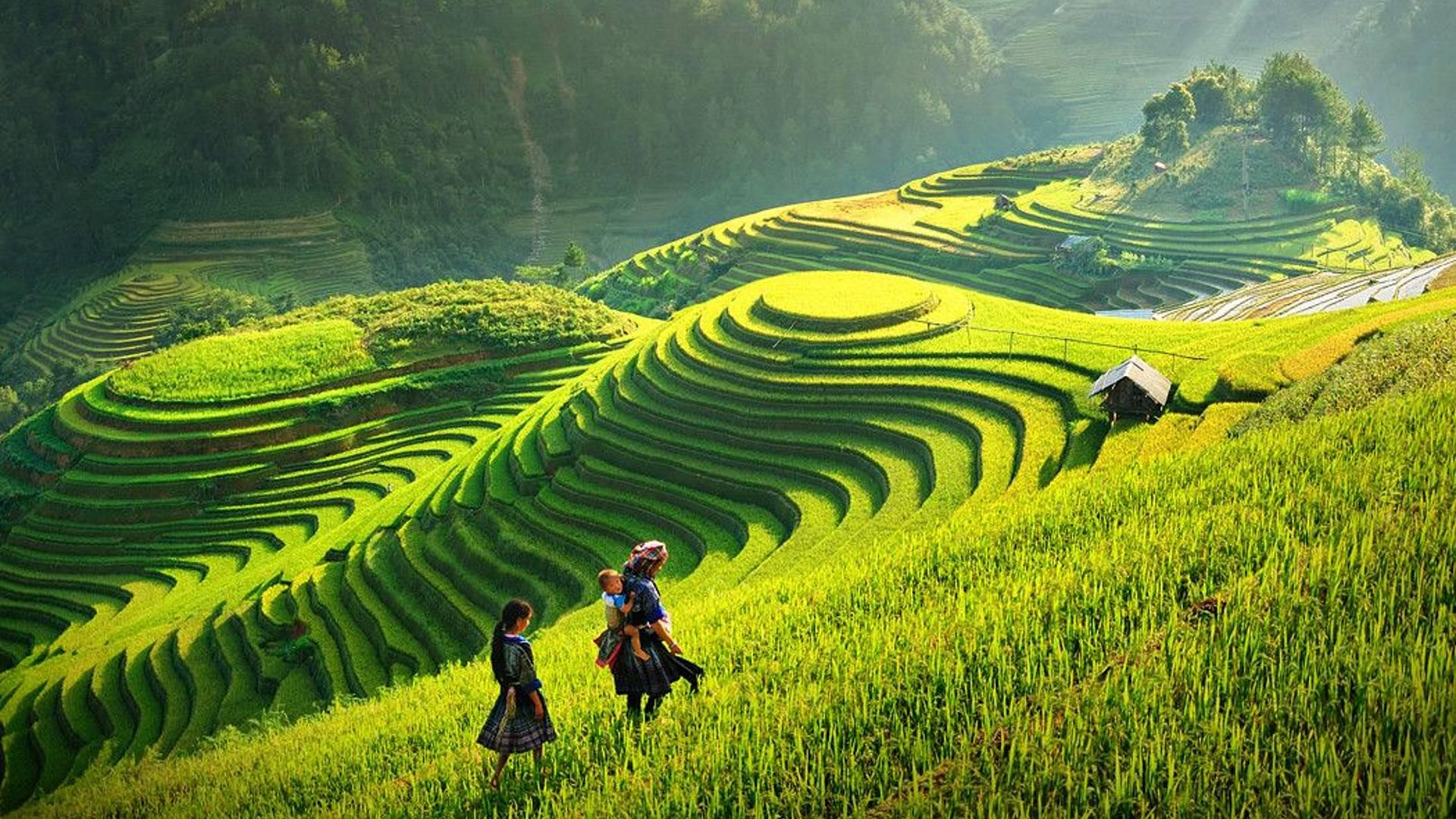 De la montagne du Vietnam au delta du Cambodge