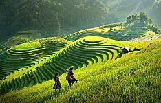 De la montagne du Nord au delta du Cambodge