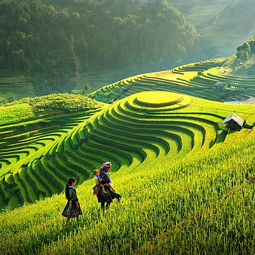 De la montagne du Vietnam au delta du Cambodge -