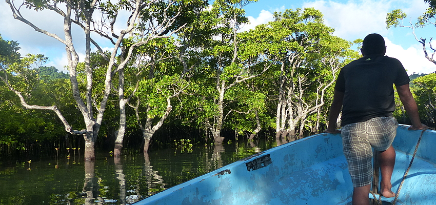Nature fidjienne