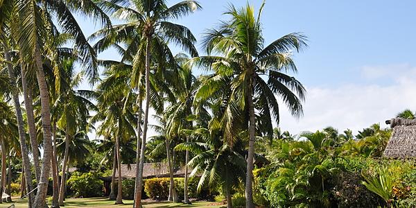 Paysage fidjien
