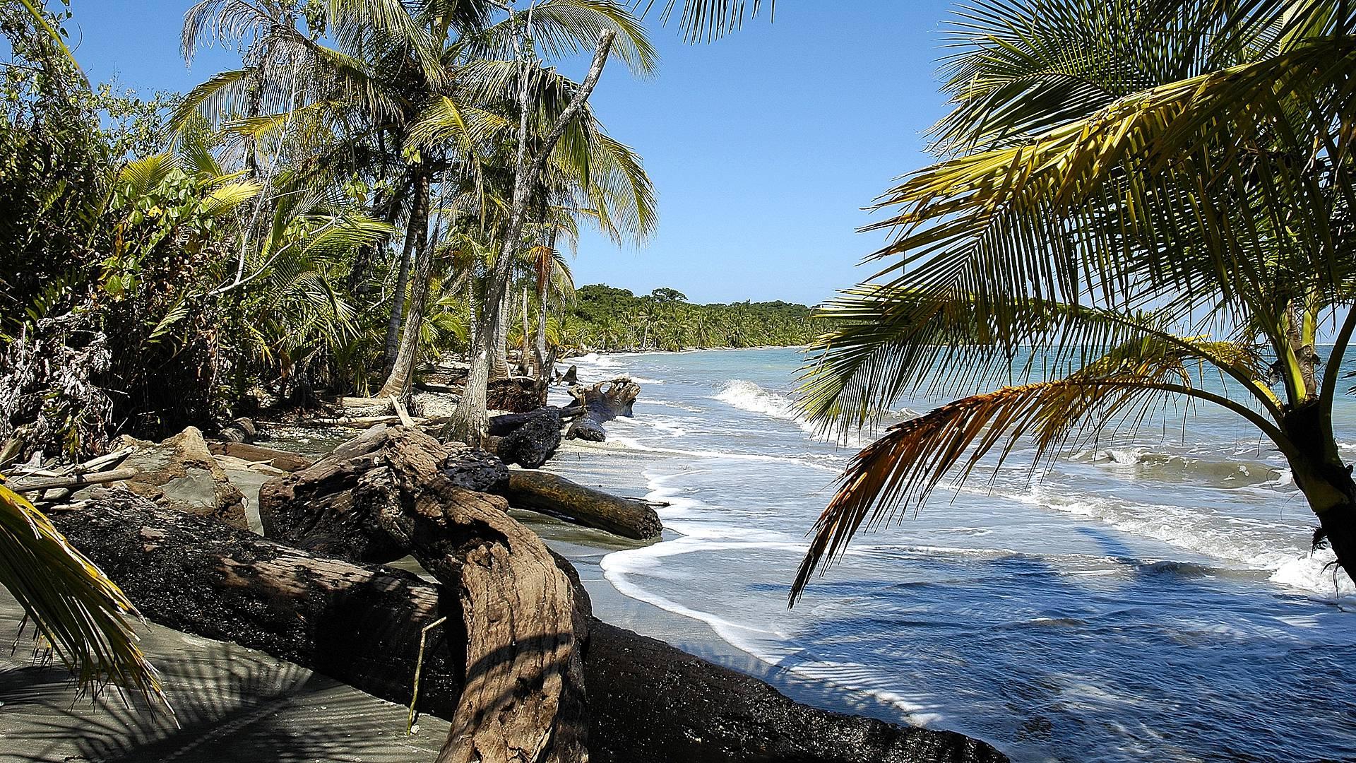 Entre jungle, plage et volcans : changements de rythmes et de décors
