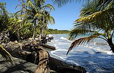 Entre jungle, plage et volcans