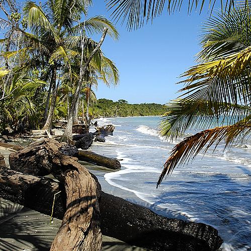 Entre jungle, plage et volcans - San José -