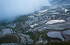 Minorités du Yunnan, de Guizhou et Guilin