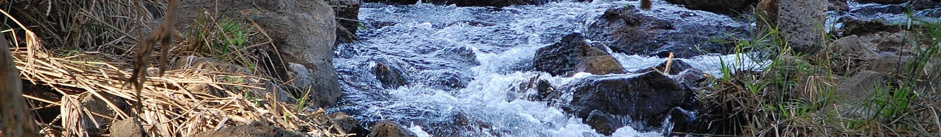 Rivière Tsavo