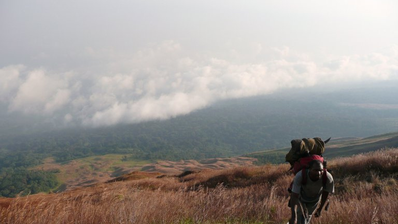 Image Sport aventure: escalade, tyrolienne et randonnées équestres