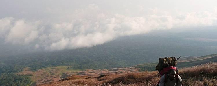 """Ascension du """"Char des dieux"""": Le Mont Cameroun"""