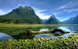 Politesse et usages en Nouvelle-Zélande