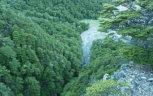 La Nature exceptionnelle de la Nouvelle-Zélande