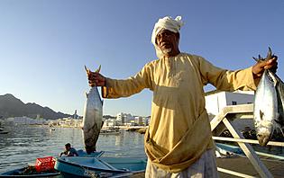 Marché aux poissons à Mascate