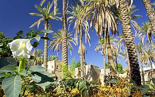Massif du Hajjar