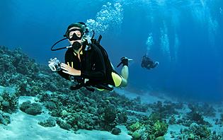 Plongée en Jordanie