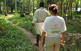 Randonnée dans le Kerala
