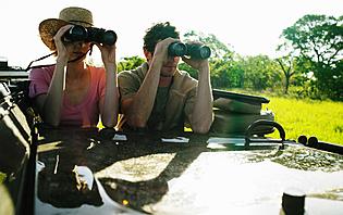 Safari autotour