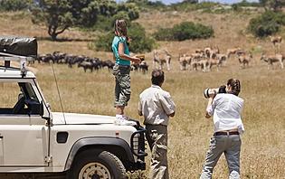 Votre safari sur mesure!