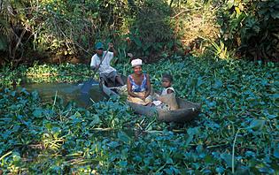Palmarium Madagascar