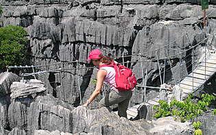 Les tsingy de Bemaraha