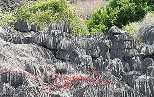 Tsingy Madagascar