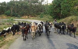 Route de Fianarantsoa