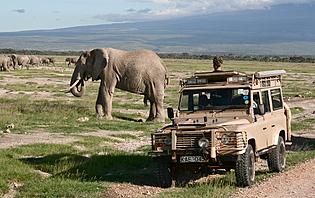 Louer un véhicule en Namibie