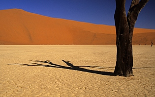 Parcs Nationaux Namibie