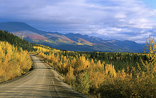 Yukon en automne
