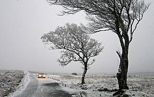 Irlande sous la neige