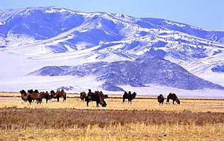 Les montagnes en Mongolie