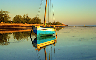 Au abord de l'île Pemba, la mer forme un écrin de tranquillité et de beauté..