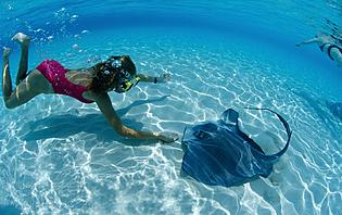 Prenez votre masque et votre tuba, et partez à la rencontre de la faune et de la flore sous-marine en Indonésie !