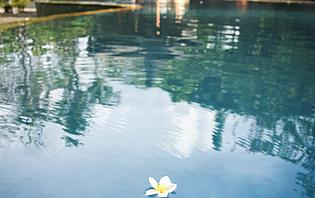 Avec piscine ou sans, vous serez toujours bien accueillis en Indonésie !