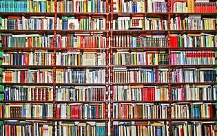 Quels livres pour partir au Laos?