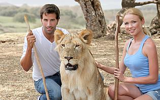 Safari en amoureux : découvrez la faune de la Tanzanie !