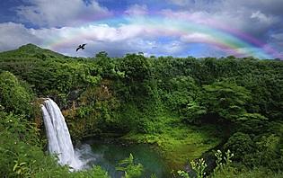 Hawaii, terre volcanique : un paradis pour les amoureux !