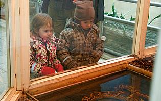 Vos enfants s'émerveilleront des beautés de Tallinn