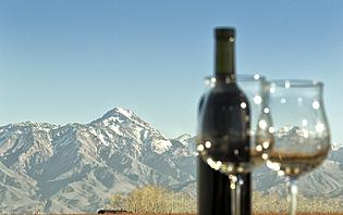 Mendoza, la capitale du vin, où vous pourrez savourez un verre face à la cordillère des Andes !
