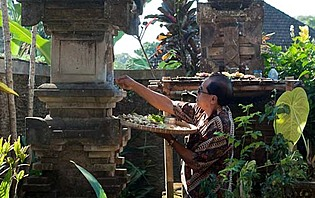 Rituel quotidien à Ubud