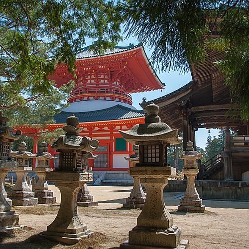 Pèlerinage au coeur des monts Kii - Tokyo -