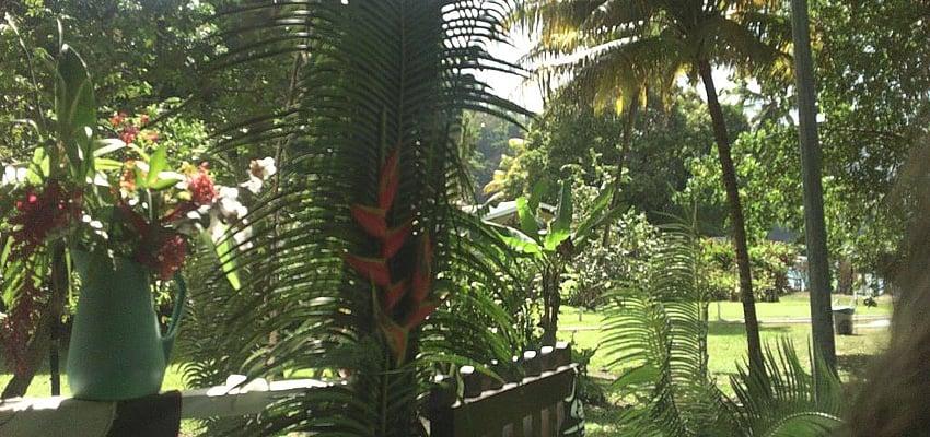 Nature de Trinidad et Tobago