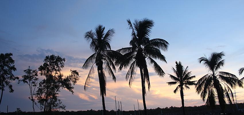 Paysage de Martinique