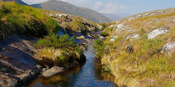 Une rivière de montagne à Mulanje
