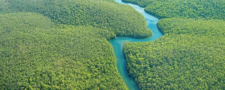 Amazzonia experience, seguendo il corso del Rio delle Amazzoni