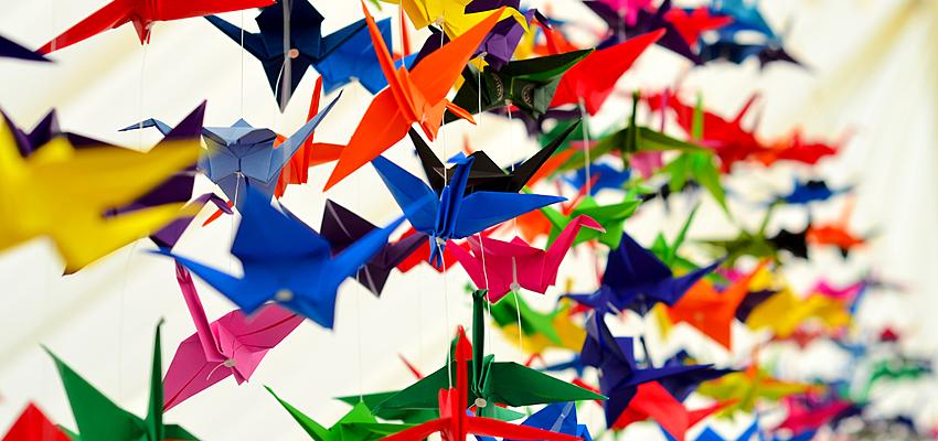 Origami : une envolée d'oiseaux muticolores